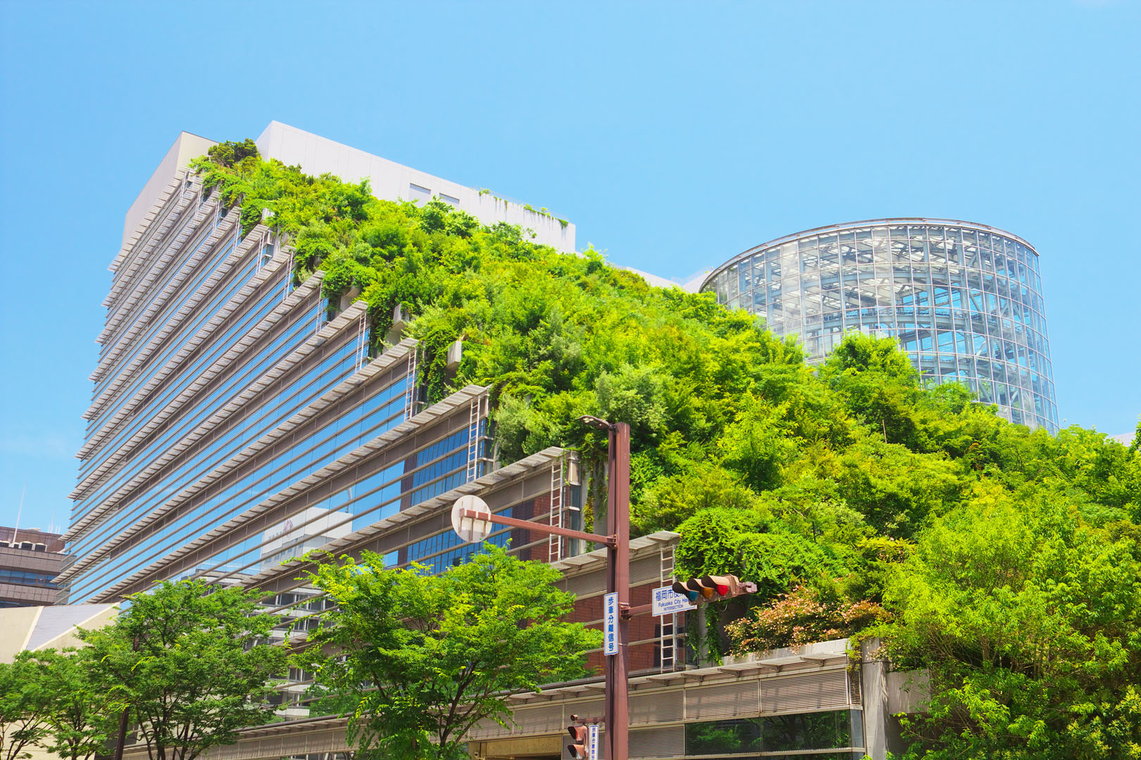 What Is A Green Building Simply Put It S The Environmentally Conscious Construction And Operation Of Buildings In Other Words These Are